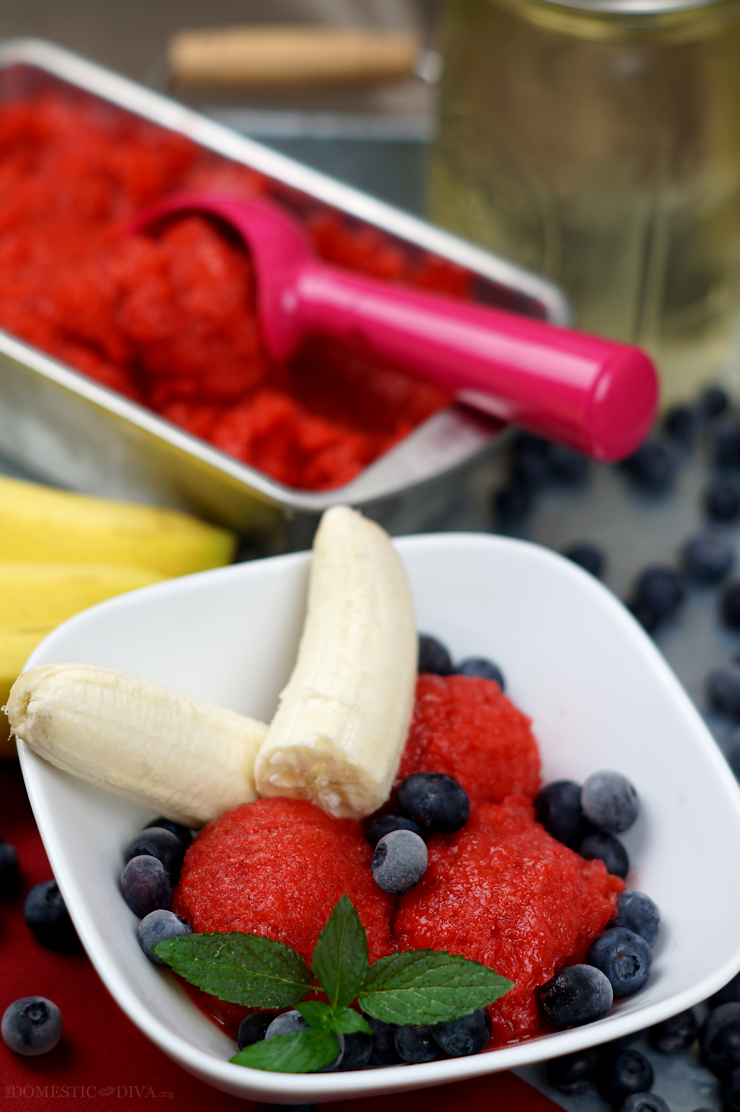 Fourth of July Dessert: Red, White, and Blueberry Sorbet Recipe